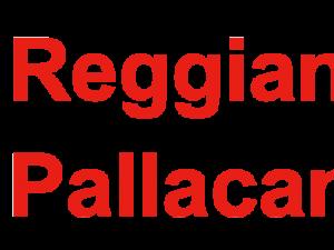 Bombardi Rettifiche: 5 anni con Pallacanestro Reggiana